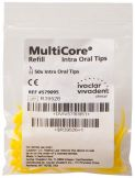Multicore Intraoral Tips  (Ivoclar Vivadent)