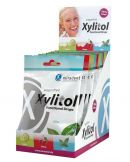 Xylitol Drops Display Minze (Hager & Werken)